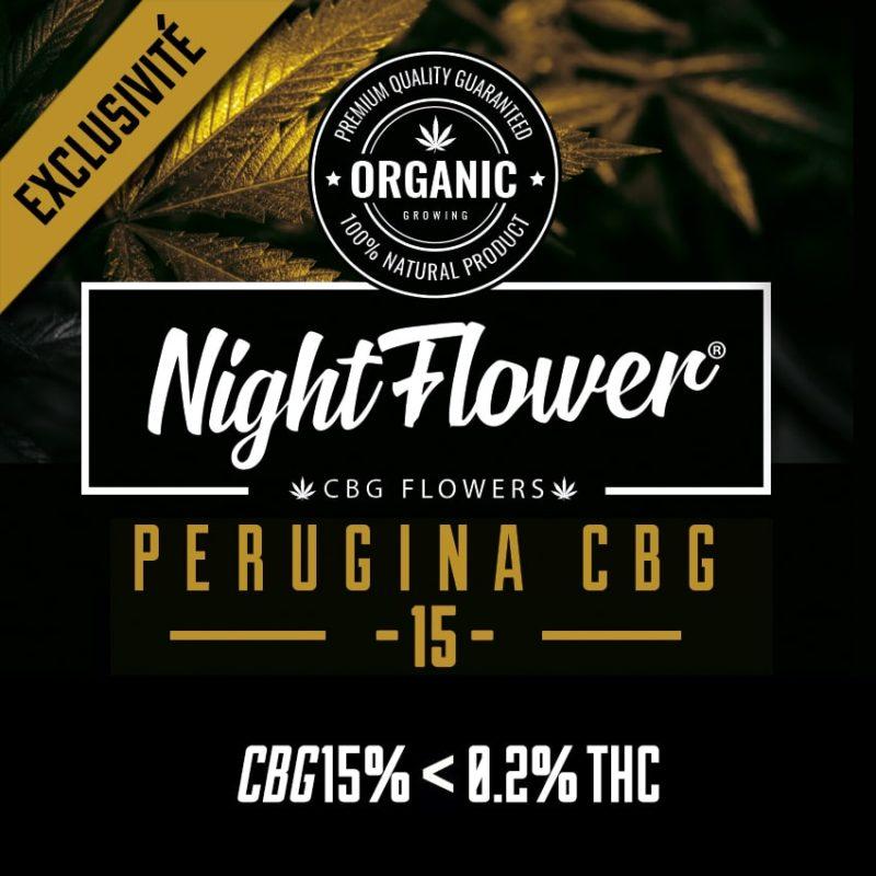 fleurs-cbg-perugina